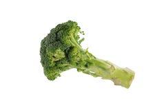 Bróculi aislado Fotografía de archivo