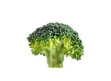 Bróculi aislado en el fondo blanco Fotos de archivo libres de regalías