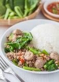 Bróculi chino frito con la bola del cerdo y de carne foto de archivo libre de regalías