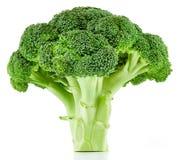 Bróculi crudo aislado foto de archivo libre de regalías