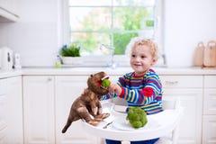 Bróculi de alimentación del niño pequeño al dinosaurio del juguete Foto de archivo