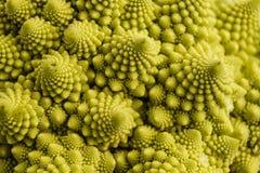 Bróculi de Romanesco Fotos de archivo libres de regalías