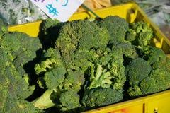 Bróculi en el mercado del granjero Imagen de archivo libre de regalías