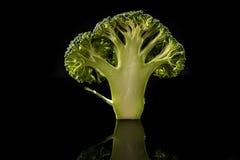 Bróculi en fondo negro Foto de archivo libre de regalías