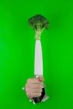 Bróculi en un cuchillo Fotos de archivo