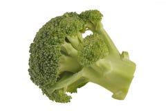 Bróculi en un fondo blanco Imagen de archivo libre de regalías