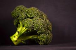 Bróculi en un fondo negro Foto de archivo libre de regalías
