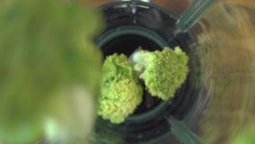 Bróculi fresco que vierte en la licuadora, vídeo del primer almacen de video