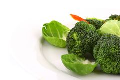 Bróculi ligeramente cocinado Imagen de archivo libre de regalías