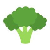 Bróculi plano del icono Imágenes de archivo libres de regalías