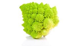 Bróculi raro. Imagen de archivo libre de regalías