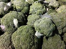 Bróculi - una fuente muy buena de fibra dietética Imagen de archivo libre de regalías