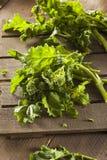 Bróculi verde crudo orgánico Rabe Rapini Imágenes de archivo libres de regalías