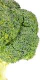 Bróculi verde fresco Imágenes de archivo libres de regalías