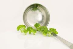 Bróculi y cuchara Fotografía de archivo libre de regalías