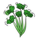 Bróculos Fotografia de Stock Royalty Free