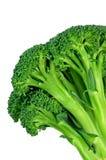 Bróculos (com trajeto de grampeamento) Fotografia de Stock Royalty Free