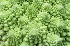 Bróculos de Romanesco Imagem de Stock