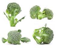 Bróculos frescos fotos de stock royalty free