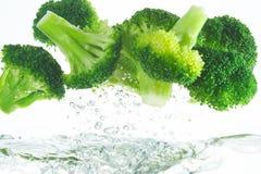 Bróculos frescos Imagem de Stock Royalty Free