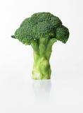 Bróculos frescos Imagens de Stock Royalty Free