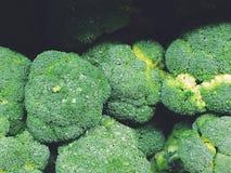 Bróculos frescos imagem de stock