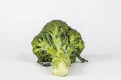 Bróculos frescos isolados imagem de stock