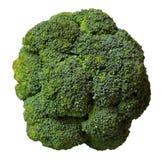 Bróculos isolados Imagem de Stock
