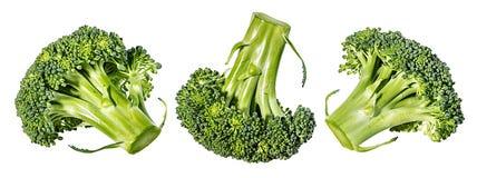 Bróculos isolados no branco Fotos de Stock Royalty Free