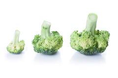 Bróculos isolados no branco Fotos de Stock