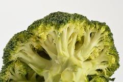 Bróculos isolados no branco foto de stock