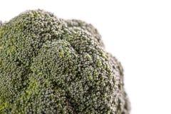 Bróculos isolados no fundo branco Fotos de Stock Royalty Free