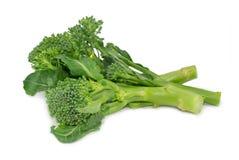 Bróculos no branco fotos de stock