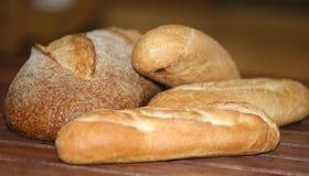 bröd royaltyfri foto