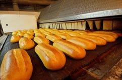 Bröd bagerit Bageriväxt Produktion av bröd Nytt vitt bröd från ugnen Arkivbild