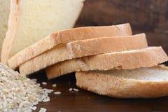 Bröd för deg för fria ris för gluten surt arkivfoto
