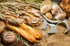 Bröd för helt vete royaltyfri bild