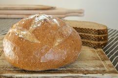Bröd i ett bageri shoppar Royaltyfri Bild