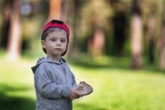 Bröd i handen av ett barn Pojken i skogen rymmer mat i hans hand arkivbild