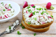 Bröd med keso Royaltyfri Fotografi
