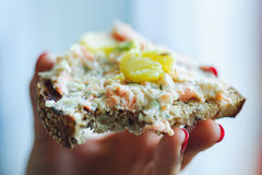 Bröd med laxrillettes fotografering för bildbyråer