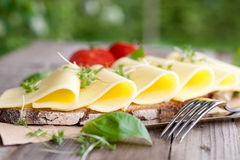 Bröd med ost royaltyfri bild