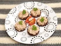 Bröd med tonfiskfisken Royaltyfria Foton