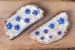 Bröd-, ost- och borageblommor Royaltyfri Foto