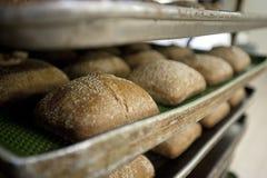 Bröd på bageriugnen Arkivfoto