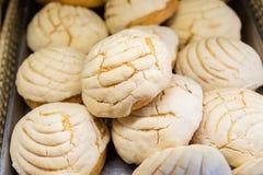 Bröd - panna de dulce Conchas arkivbild