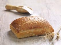 bröd släntrar royaltyfri bild