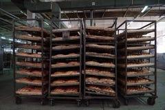 Bröddanandeprocess Royaltyfria Foton