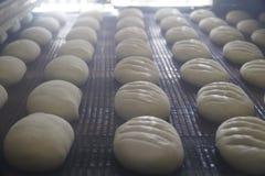 Bröddanandeprocess Arkivbild