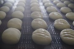 Bröddanandeprocess Royaltyfri Bild
